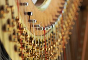 Heart Sounds - Celtic harp and gongs @ Koit dance studio